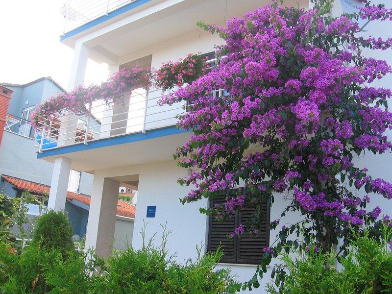 Dolce Vita, holiday rental in Pjescana Uvala