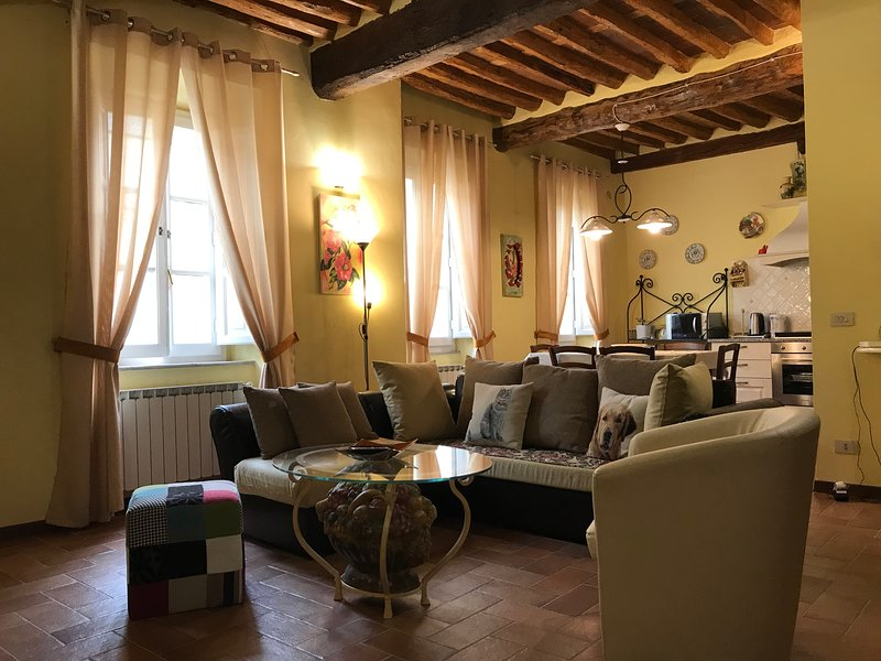 Luminoso appartamento con affacci sul parco della storica Villa Bottini e WI-FI, alquiler de vacaciones en Lucca