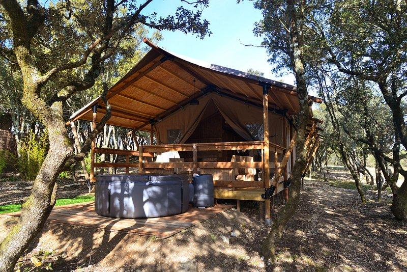 Résidence DRACONIS Lodge HATYSSA, location de vacances à La Baume-de-Transit