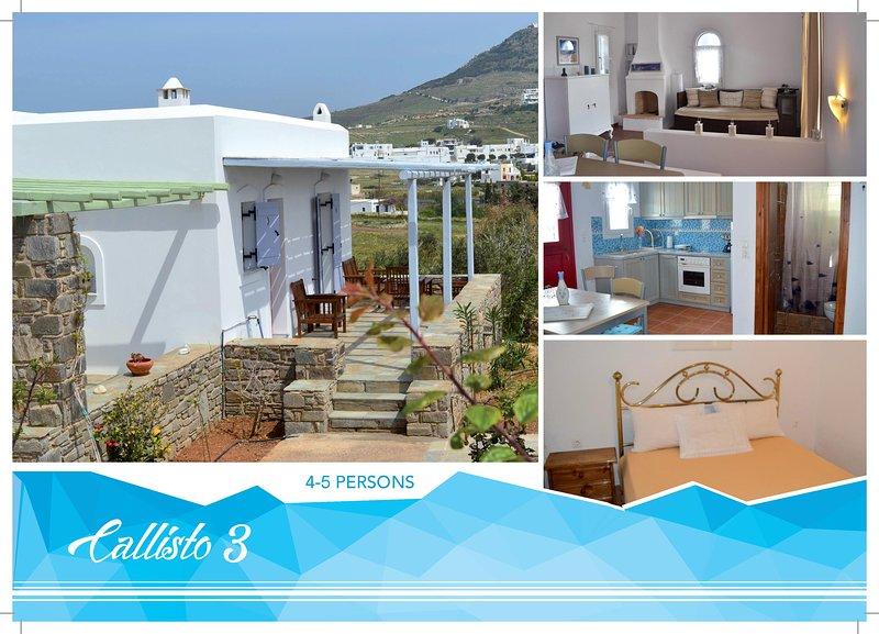 Callisto 3 Villa (Marpissa-Piso Livadi Paros), vacation rental in Lefkes