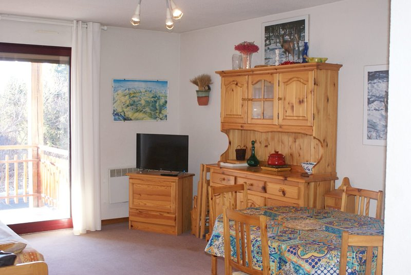 Apartment with mountain view, holiday rental in Mont-Louis
