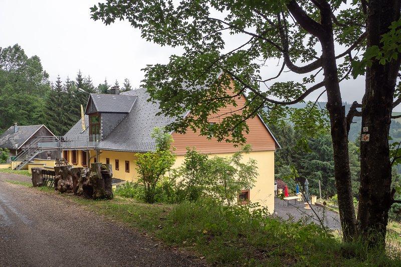 Grand gîte proche parc naturel des lacs Vosgien et vignoble Alsacien Colmar, holiday rental in La Croix-aux-Mines