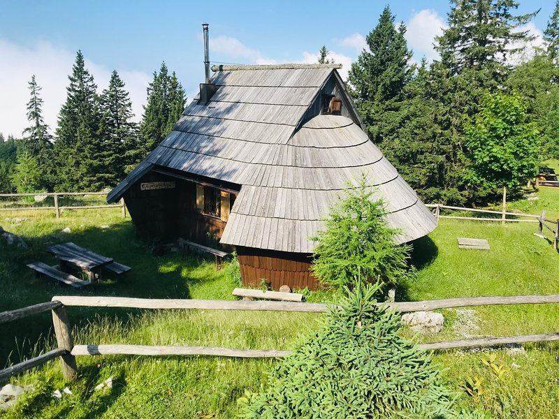 Gašparjeva chalet Velika planina, holiday rental in Senturska Gora