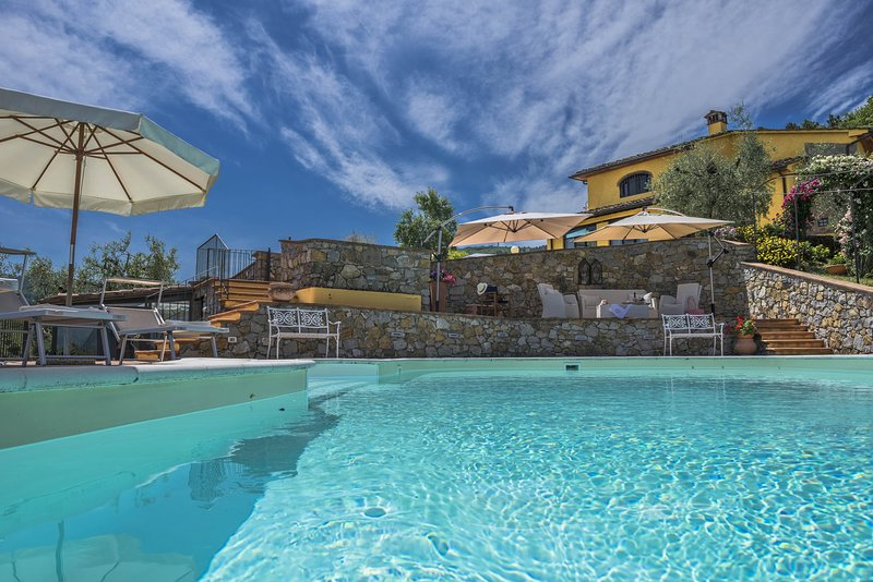 Stunning villa, swimming pool, large garden with olive grove, air conditioning, holiday rental in Casalguidi