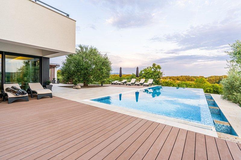 Modern 5 bedroom villa with pool, holiday rental in Jakomici