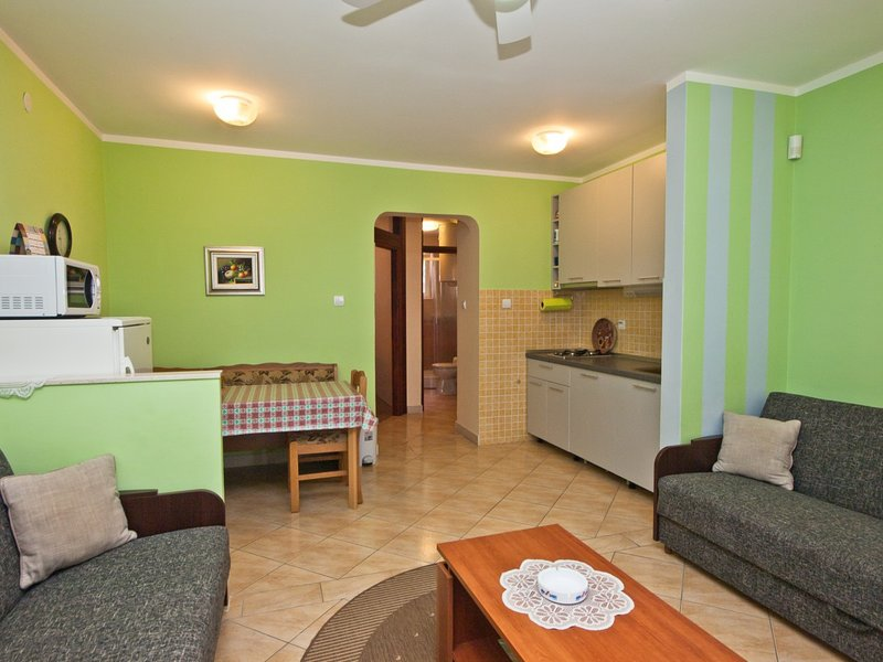 Holiday home 162904 - Holiday apartment 163556, holiday rental in Skrbcici