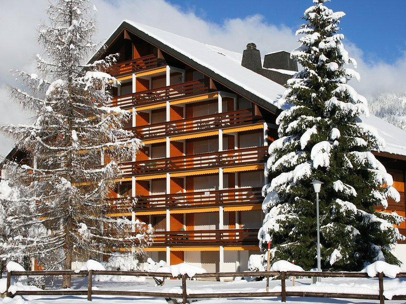 Opale 4, location de vacances à Alpe des Chaux