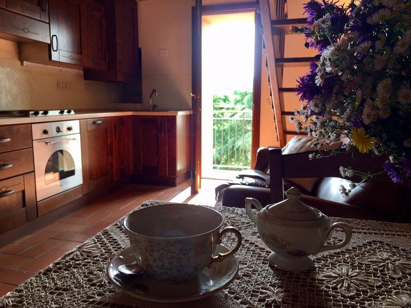 Casa vacanze in appennino - ANTICO BORGO dell'ANCONELLA – semesterbostad i Monghidoro