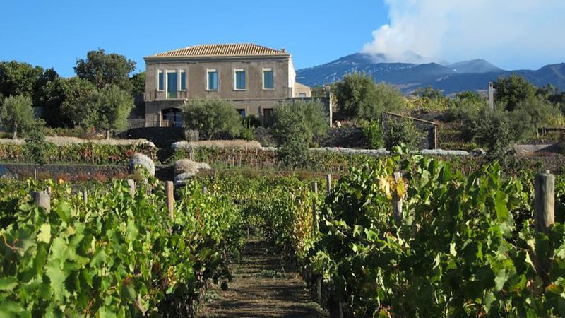 Sciaraviva, characteristic Sicilian house surrounded by an organic vineyard., holiday rental in Ragalna