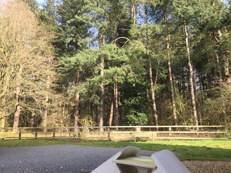 Forest View, on Kings Forest, West Stow, just outside Bury St Edmunds, location de vacances à Bury St. Edmunds