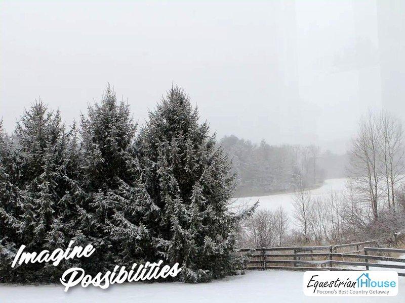 Winter Wonderland - cross country ski here or Elk Mountain only 16 miles away