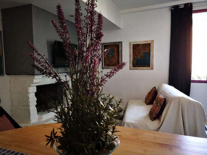 Soleil d'Aigues Mortes, appartement 'La Suite', holiday rental in Montcalm