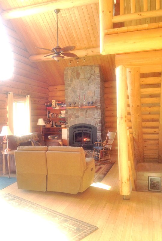 Living room with fireplace/woodburning stove.