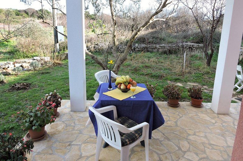 Veli Rat Apartment Sleeps 2 with Air Con - 5459327, holiday rental in Soline