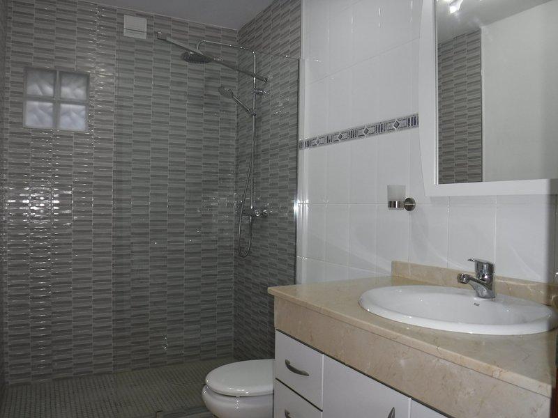 Bagno con spaziosa cabina doccia