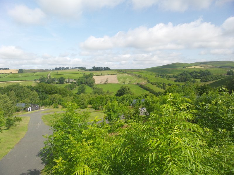 Radnor Revivals Holiday Lodge in Beautiful Mid Wales Rolling Hills, vacation rental in Llandrindod Wells