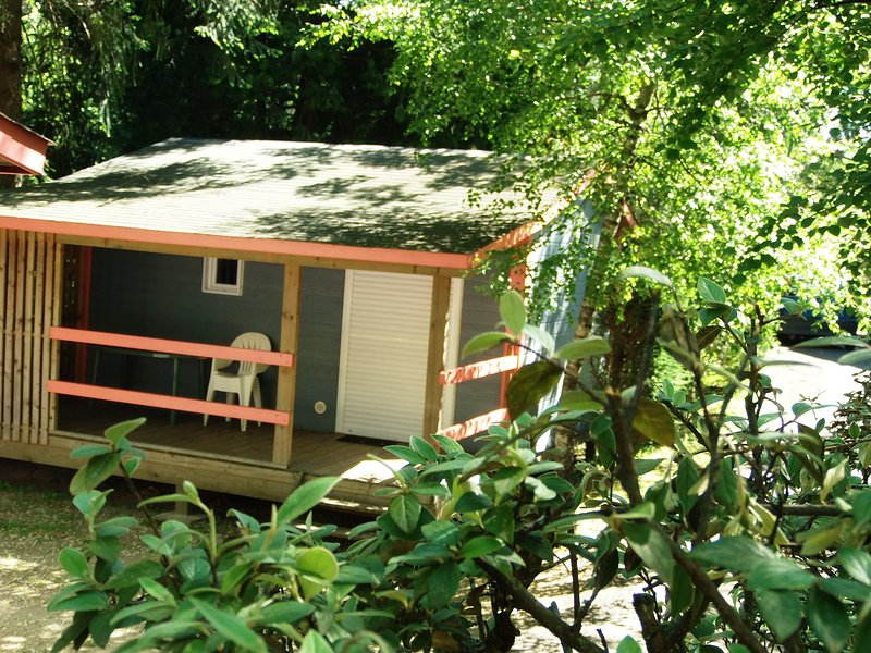 Nice chalet with shared pool & Wifi, holiday rental in Saint-Etienne-Vallee-Francaise