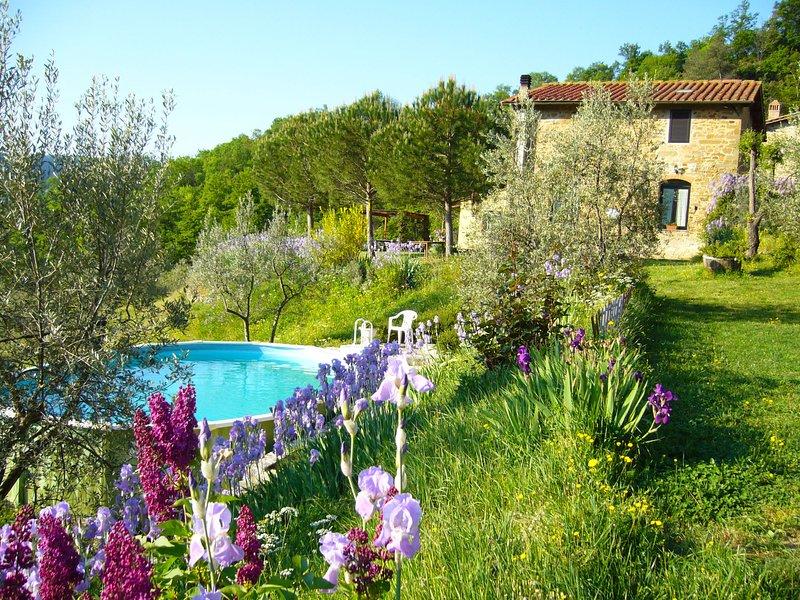 Iris, casa vacanza a San Polo in Chianti