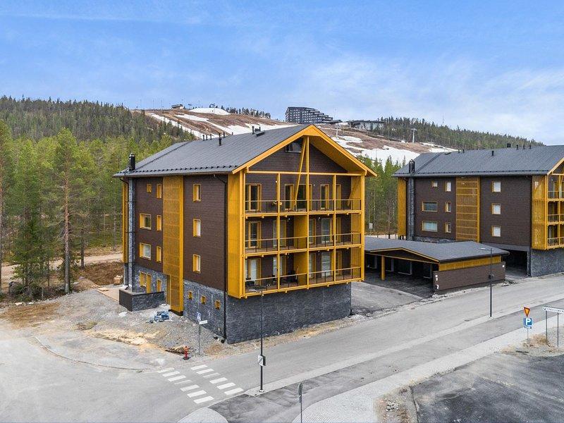 Tunturinlaita d4, 2 skipasses included, vacation rental in Levi
