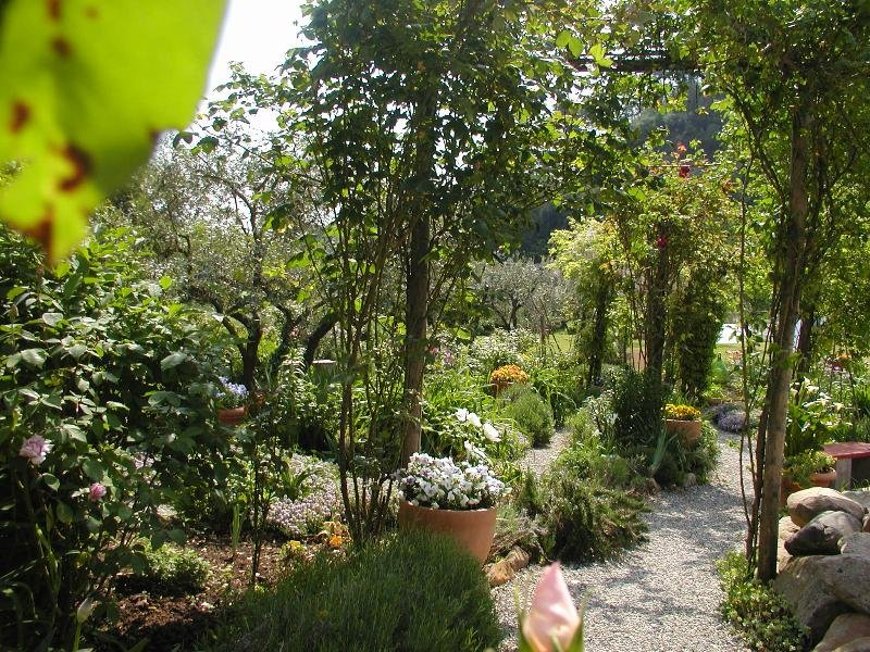 Adorable Tuscan cottage with beautiful garden just outside Lucca, sleeps 4, holiday rental in Sant'Andrea di Compito