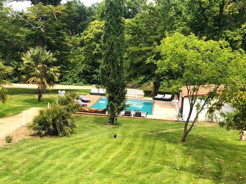 Amazing mansion with swimming-pool, holiday rental in Villenouvelle