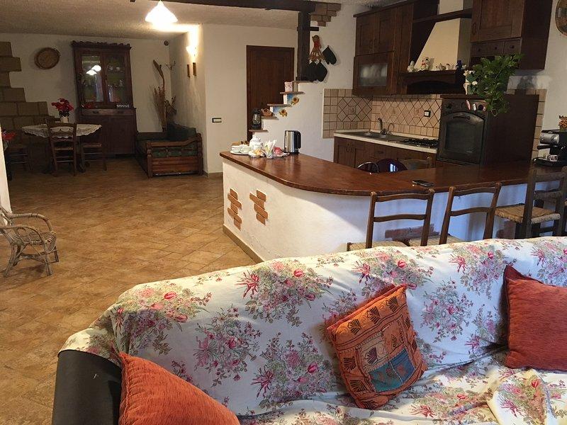 Beautiful house with garden & Wifi, vacation rental in Nisporto