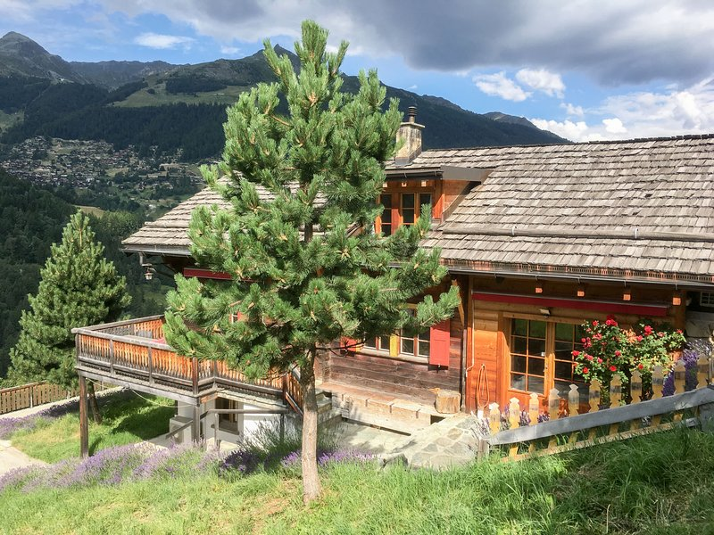 Chalet Ankie, holiday rental in Ayer