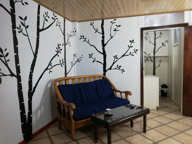 Volcano hummingbird  Fully Furnished Apartment., Ferienwohnung in San Gerardo