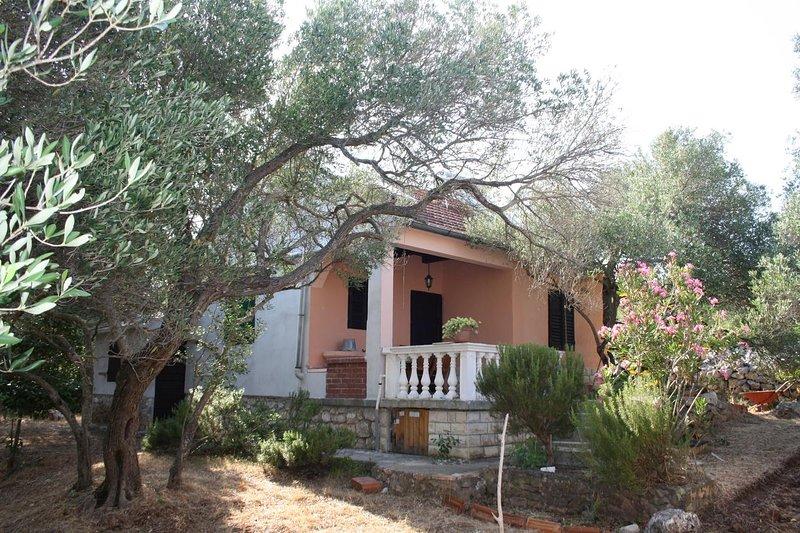 Dobropoljana Holiday Home Sleeps 5 - 5470487, location de vacances à Dobropoljana