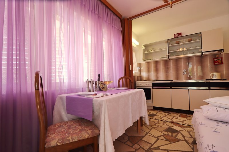 Apartments Marijana - Standard One Bedroom Apartment with Terrace, vacation rental in Wojciechow