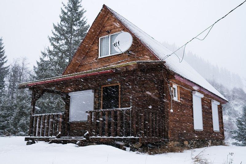 Відпочинок в Карпатах, vacation rental in Chernivtsi Oblast