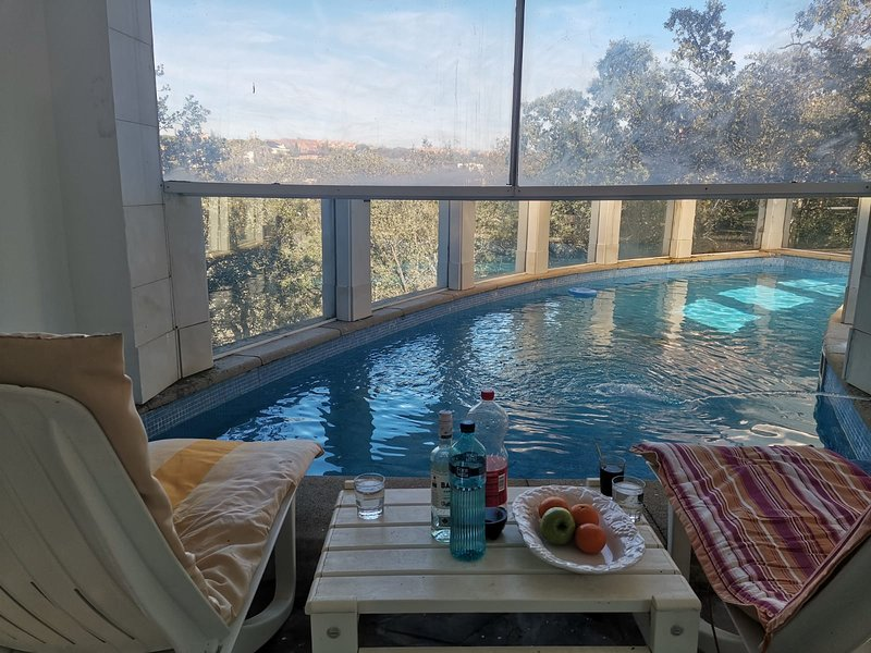 Amazing house with swimming-pool, holiday rental in Colmenarejo