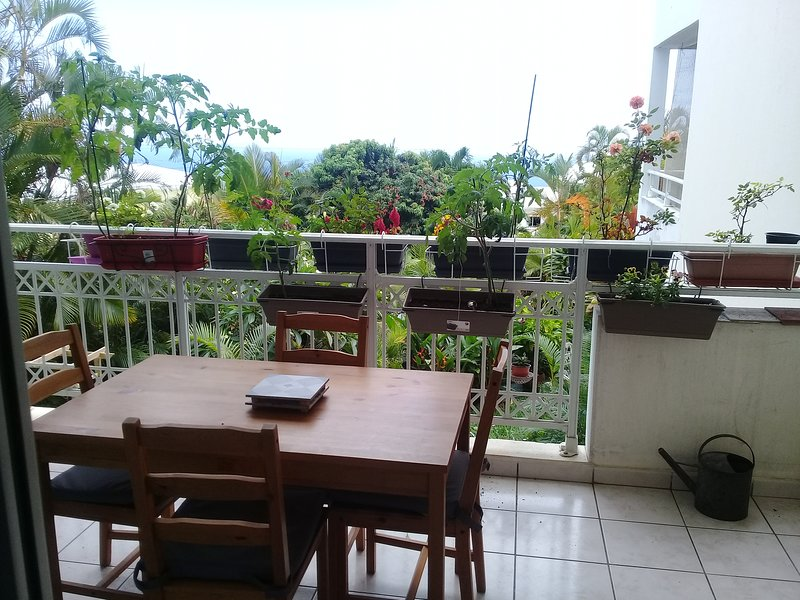 Beautiful apartment with terrace, holiday rental in Le Brule