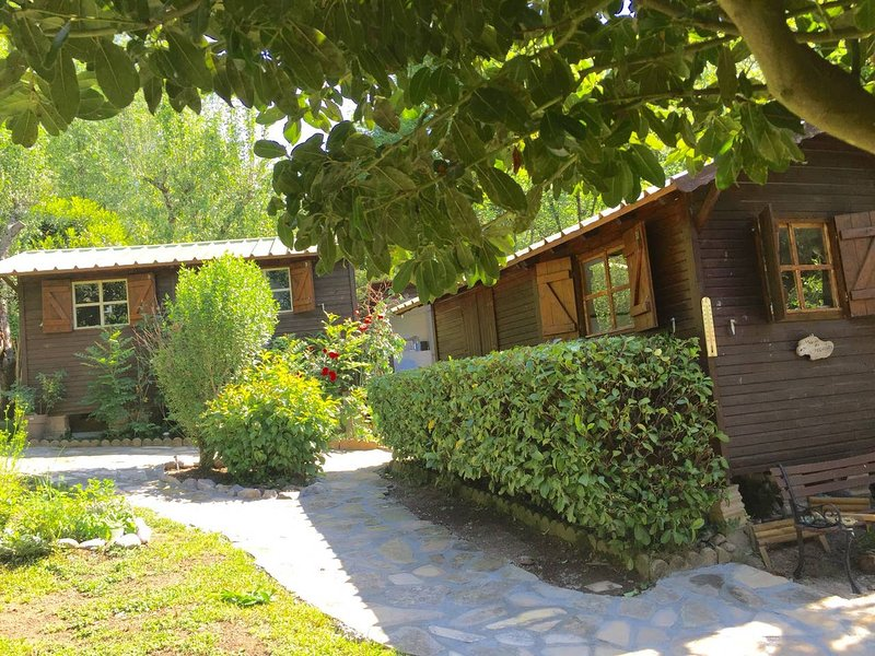 Bungalow with mountain view, holiday rental in Roquebilliere