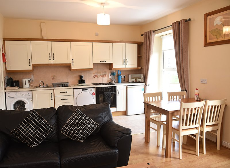 Derg Valley Apartments (sleeps 4), holiday rental in Ballybofey