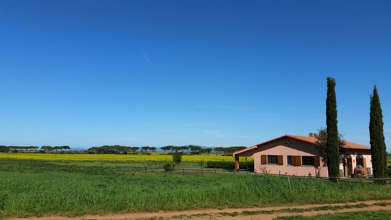 Agriturismo Le Giunchiglie, vacation rental in Alberese