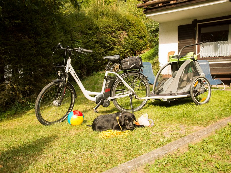 Reinskopf, vacation rental in Orlenbach