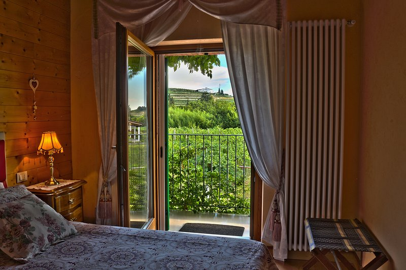 Relax in Valpolicella - Orchidea, holiday rental in Negrar di Valpolicella
