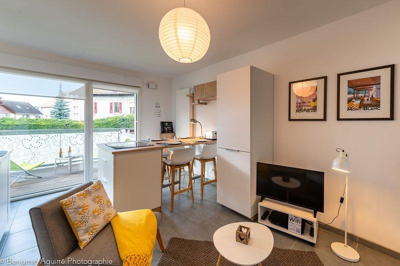 � Villa Aniciaca - Appartement récent avec terrasse 8m², holiday rental in Seynod