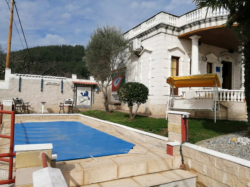 Amazing chalet with swimming-pool, holiday rental in Columbrianos