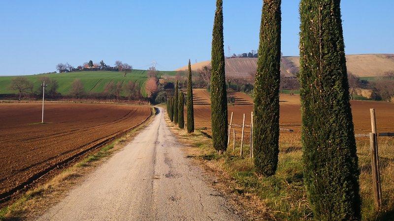 Casale Storico con Vineria Del Xiv Secolo, vacation rental in Polverigi