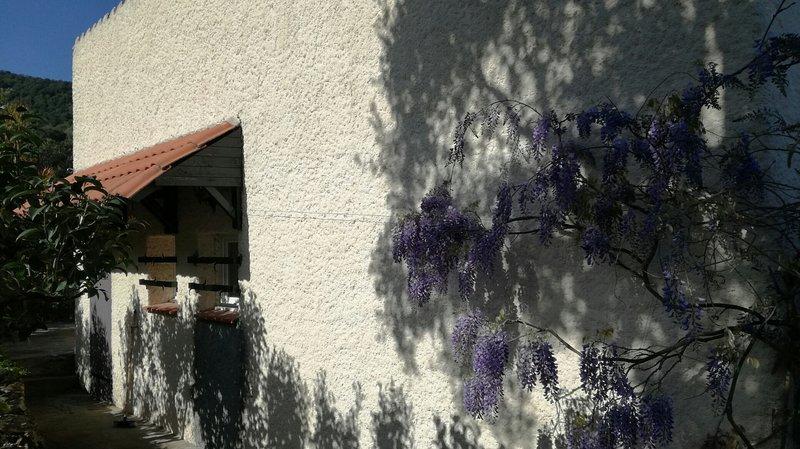 Spacieuse maison au calme 3 chambres  jardin  et magnifique  vue, holiday rental in Villelongue-dels-Monts