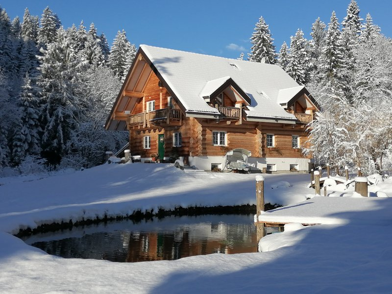 Chalet le Dorf, holiday rental in Tarvisio