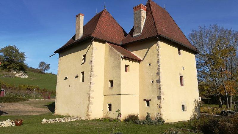 Gite tour de Langy, vacation rental in Monetay-sur-Allier