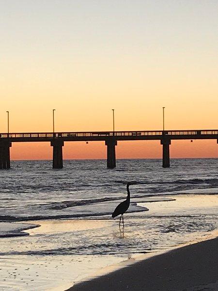 Ogni passeggiata sulla spiaggia è un ricordo!