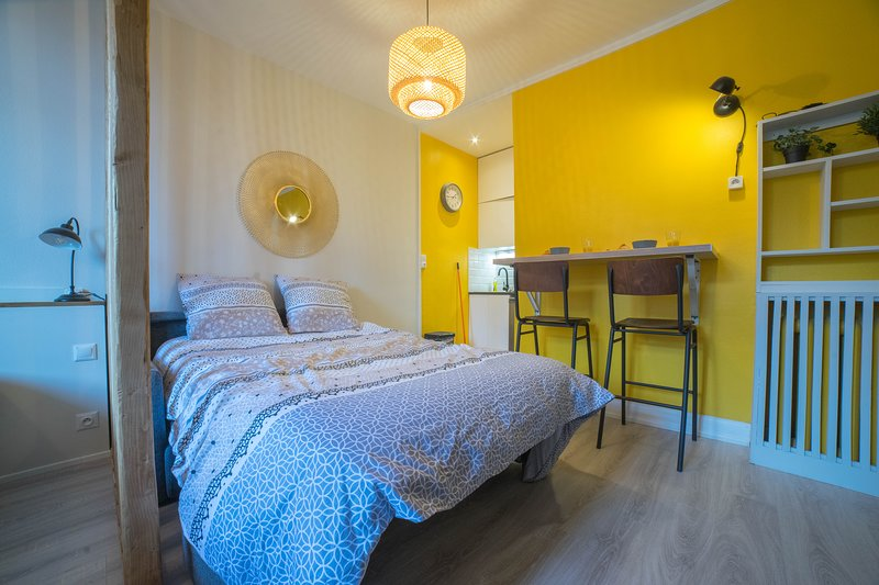 Studio moderne Proche gare- Parking privé - Calme, holiday rental in Mont-Saint-Aignan