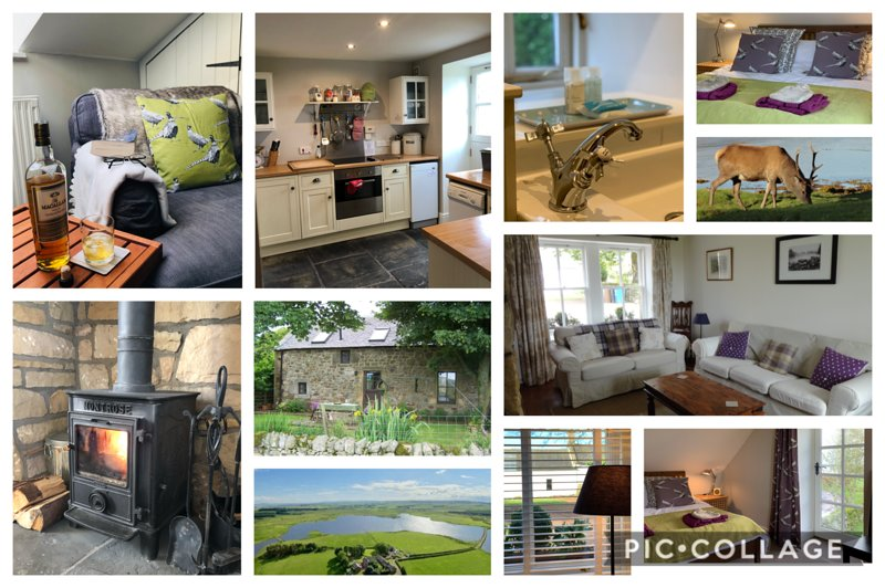 Rural country cottage with loch and hill views - Gairnshiel Cottage – semesterbostad i Biggar