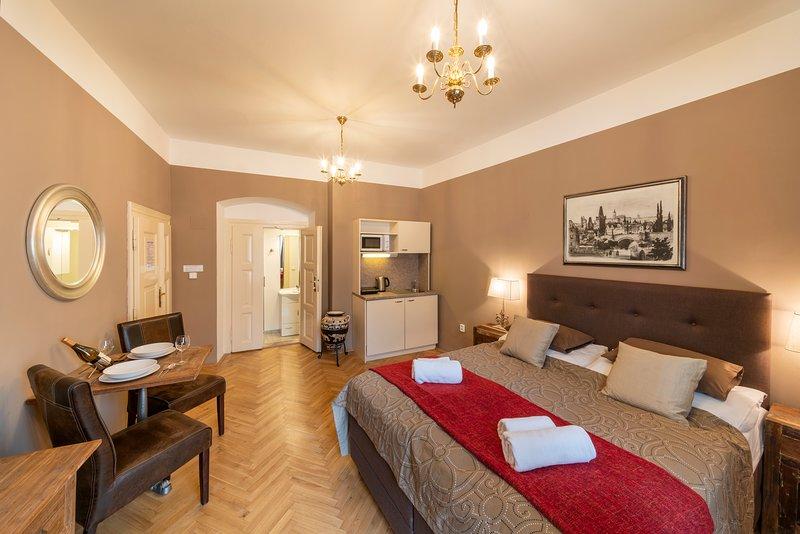 OLD TOWN - STUDIO JUNIOR MICHALSKA 6, holiday rental in Prague