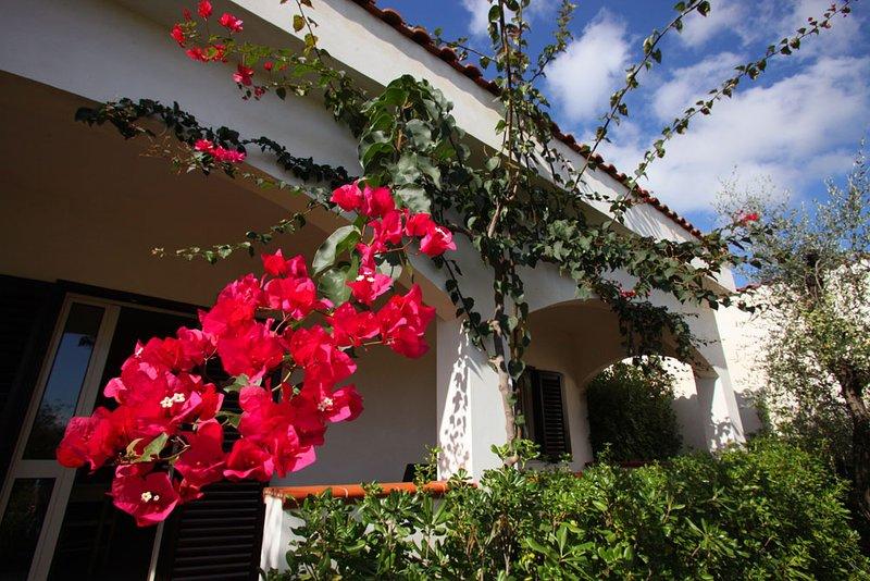 Residence Villantica - Villa 5 posti, holiday rental in Vieste