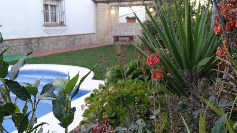 Las lagunetas del sur, holiday rental in Benalup-Casas Viejas